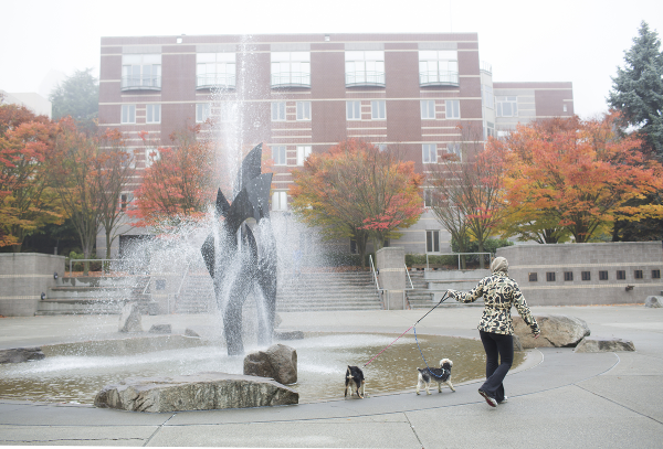 Seattle University fountain with dogs
