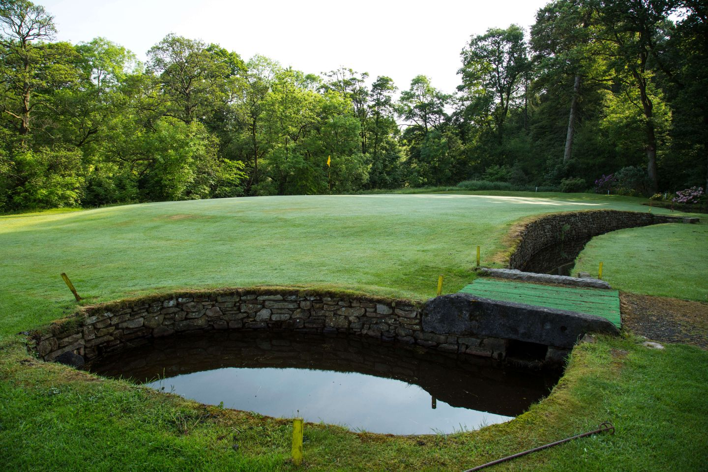 Water protects the front and right of the 5th / 15th green