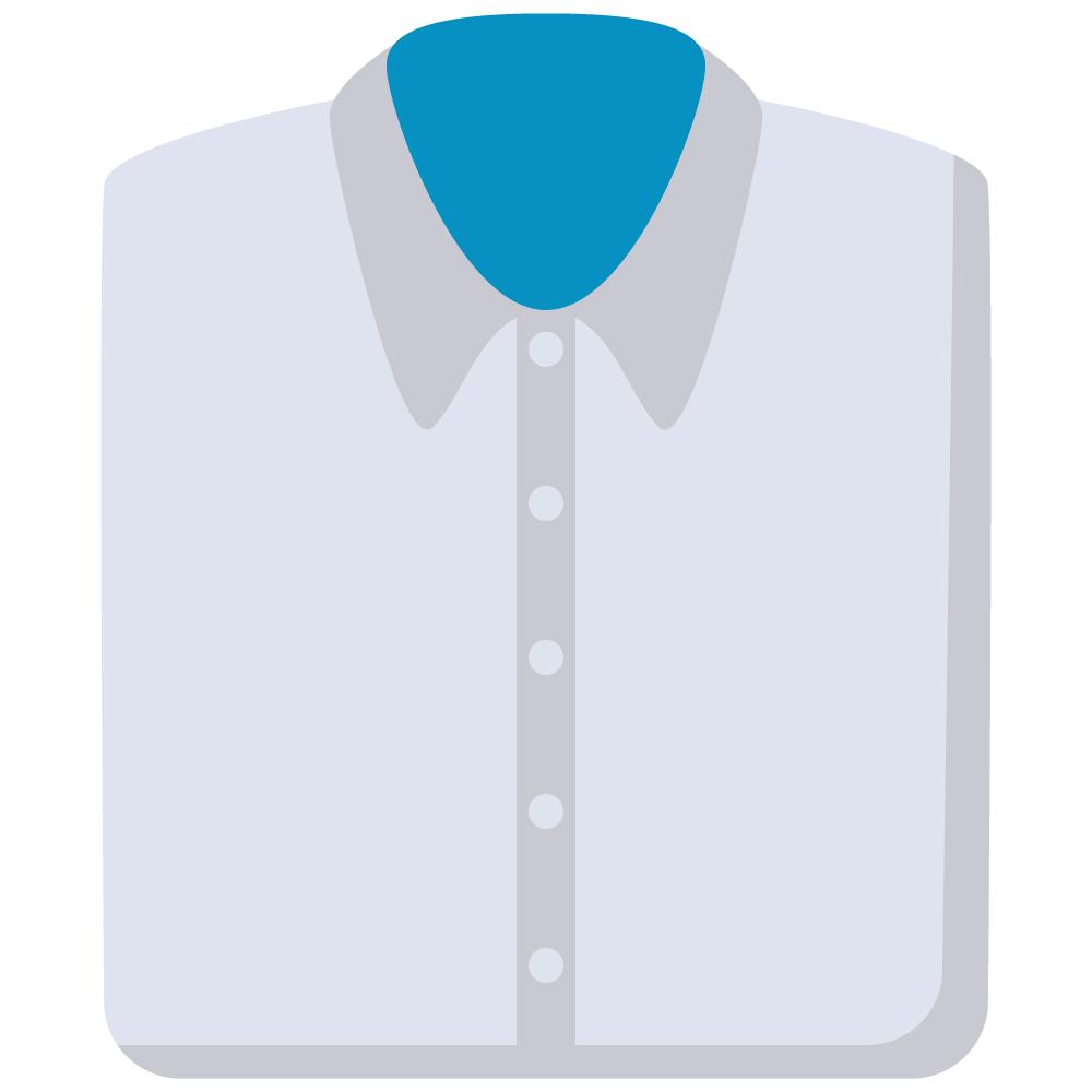 1 Shirt Ironed