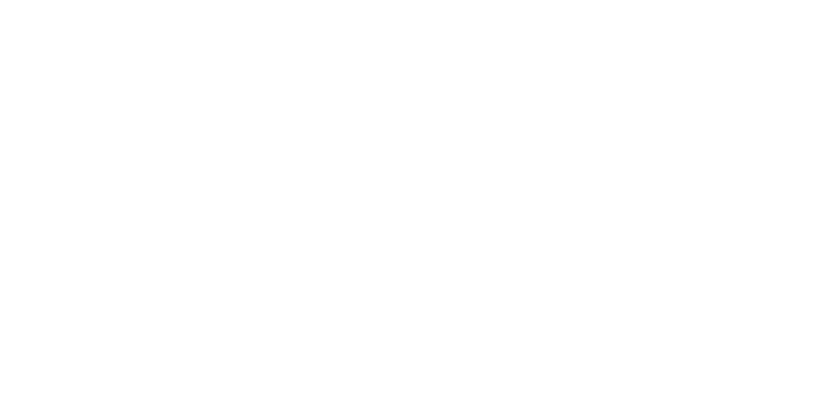 Matakana Coast Wine Country