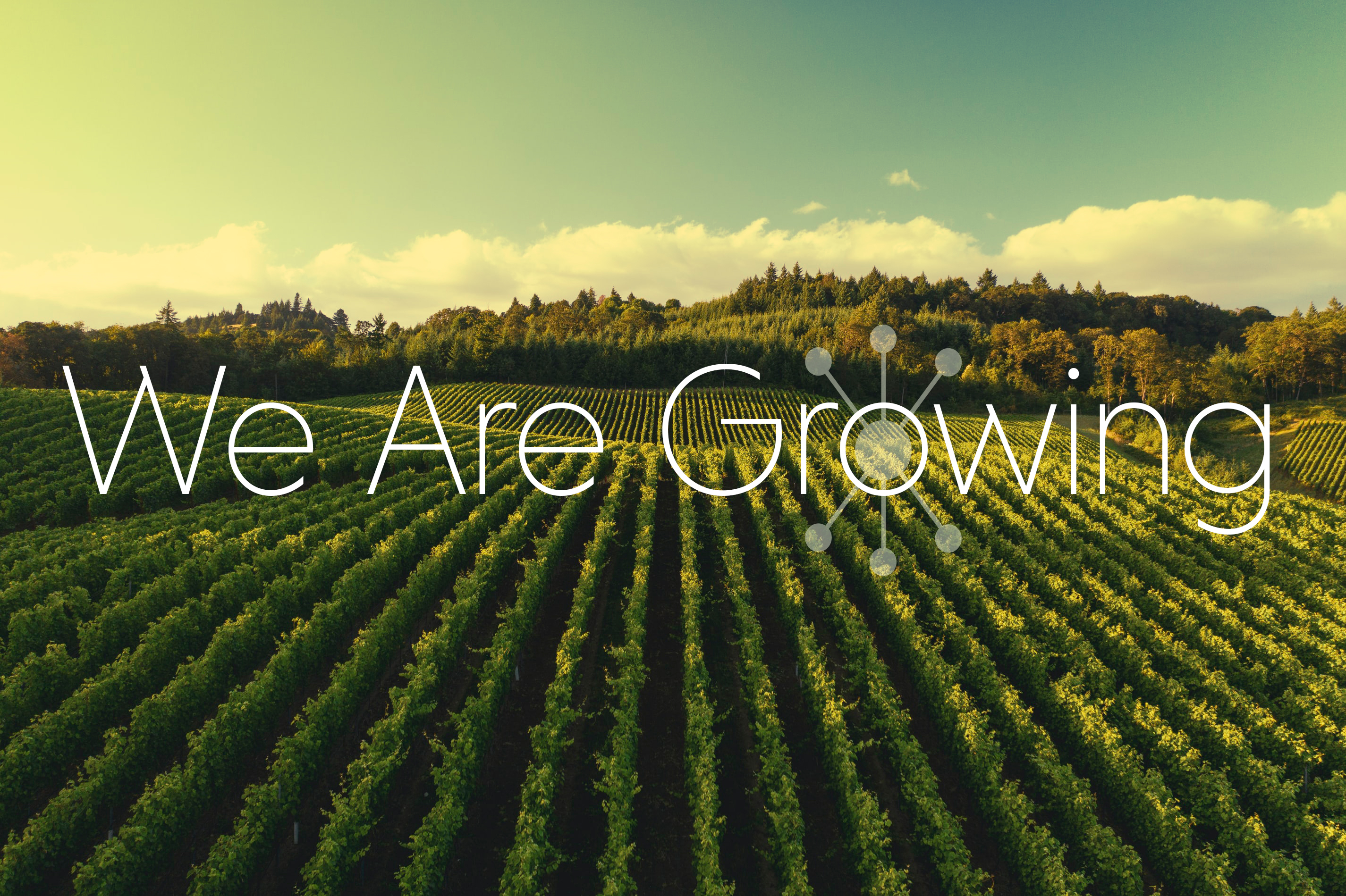 We Are Growing