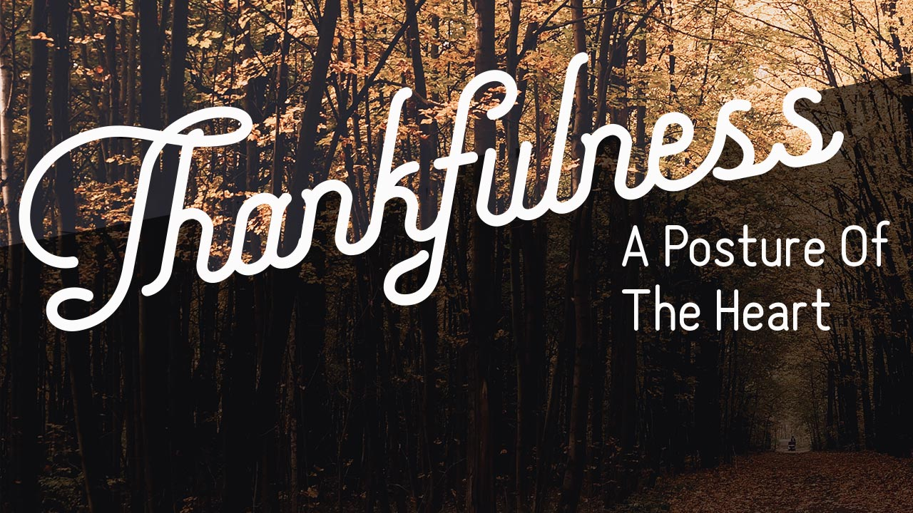 Thankfulness - In Pain