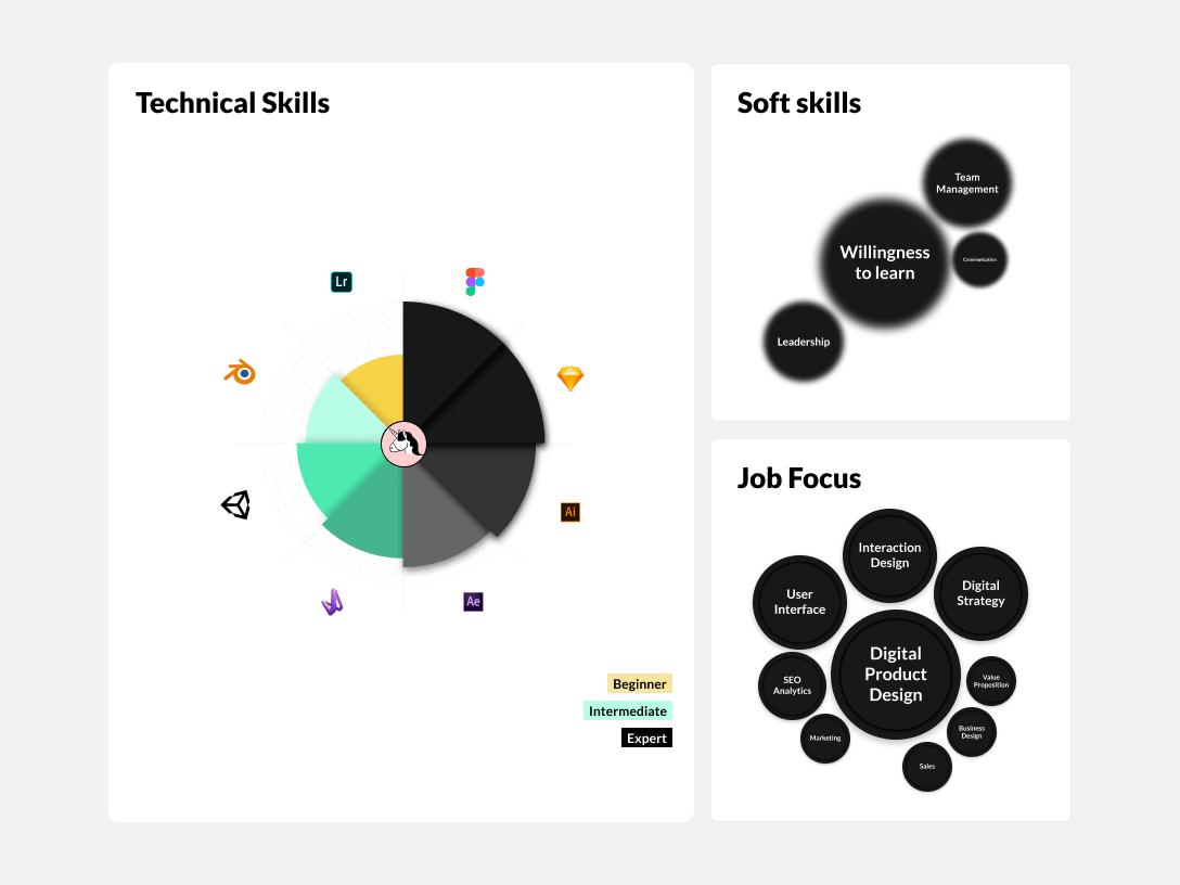 MuchSkills - the modern Skills Matrix visualization of Job Focus, Soft Skills and Technical Skills