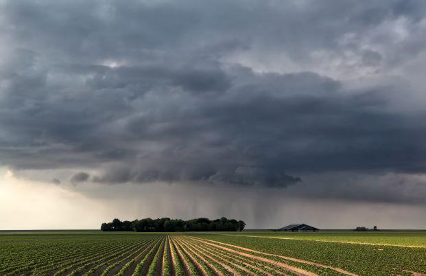 Soil moisture graphs in mm