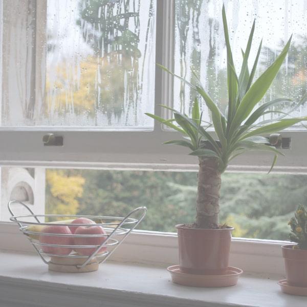 window bringing in fresh air