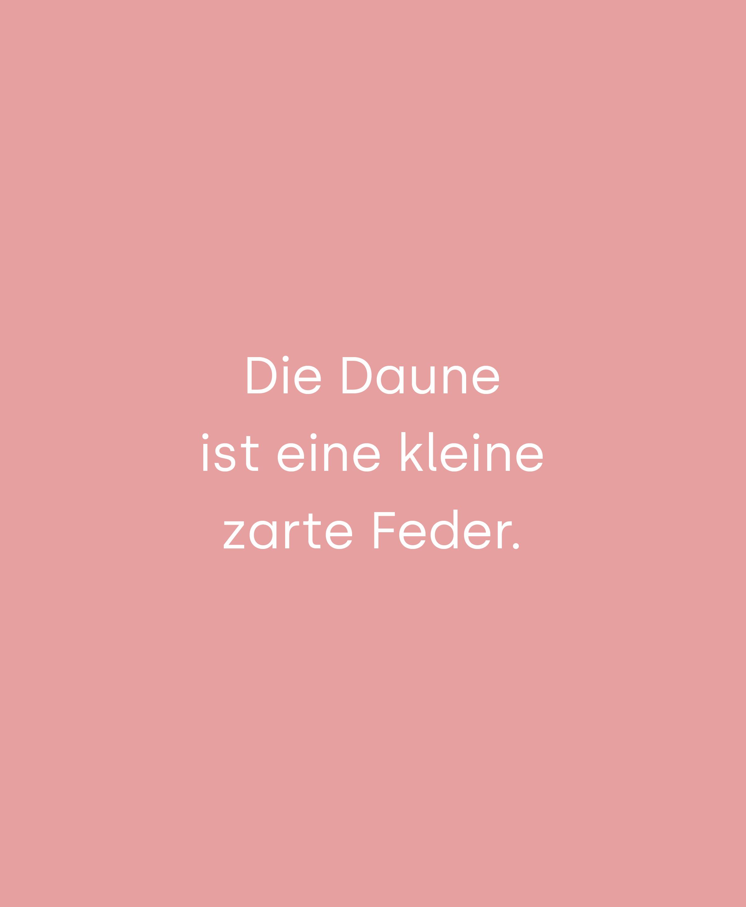 """weiße Schrift auf rosa Hintergrund """"Die Daune ist eine kleine zarte Feder"""""""