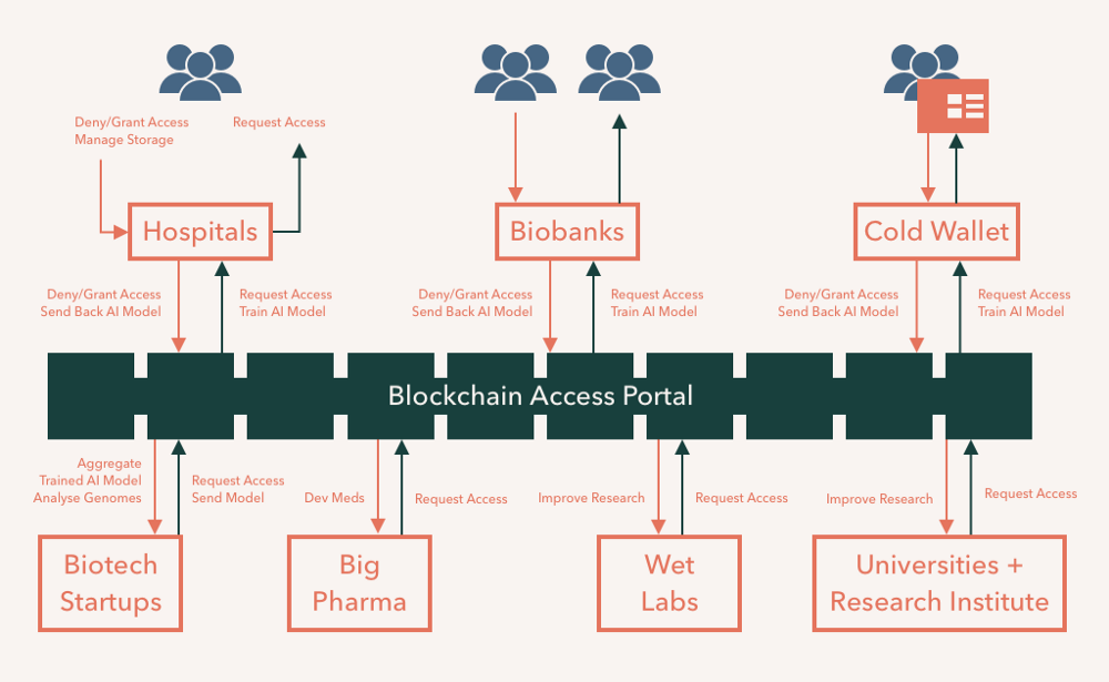 Blockchain network with hospitals, biobanks & individual cold wallets on one side to biotech, big pharma, wet labs & reserch
