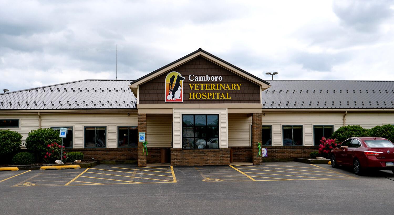 Camboro Veterinary Hospital