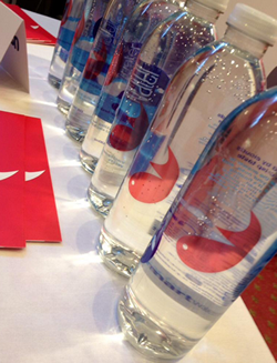 Firefish Branded Water Bottles at the TEAM Conference