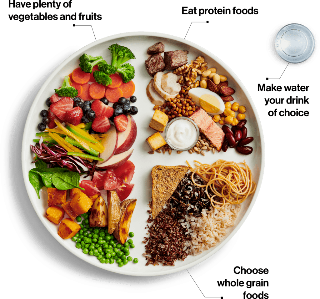 A plate and glass of water demonstrate Canada's Food Guide recommendations. The left half of the the plate is covered in colourful fruits and vegetables. The right half is divided into protein-rich and whole grain foods.