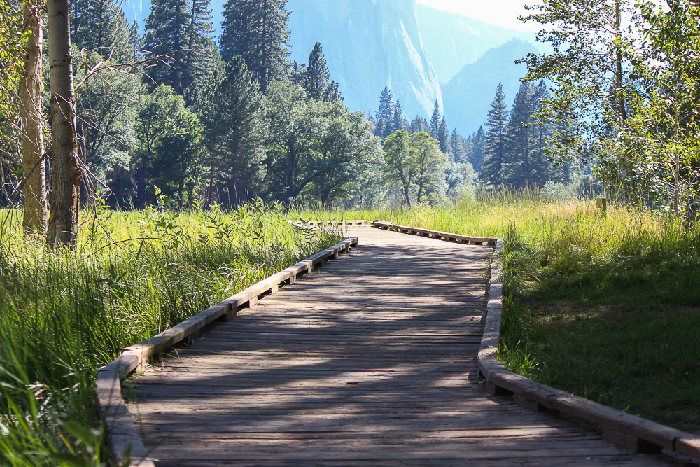 Yosemite valley boardwalk