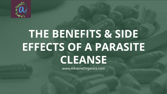 The Benefits & Side Effects Of A Parasite Cleanse