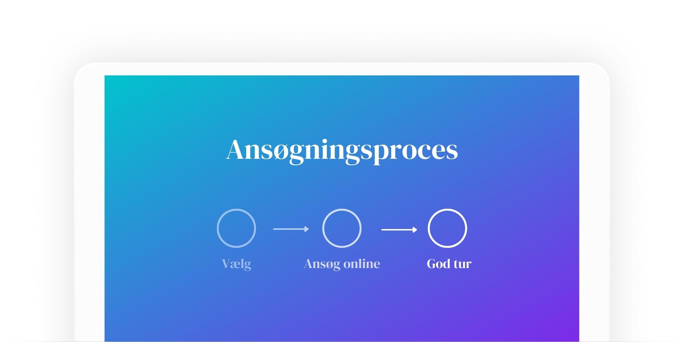 application process description