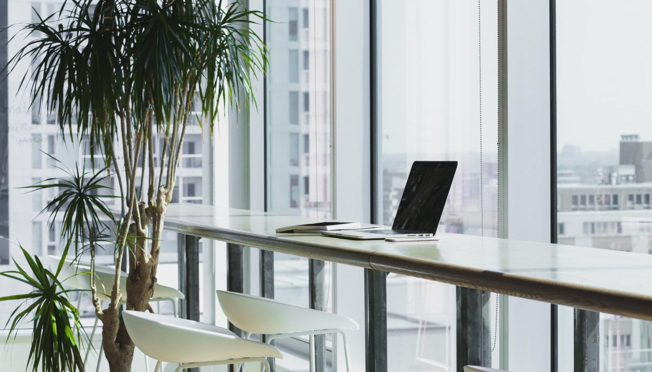 Styrk dit CV og jobmuligheder med study abroad