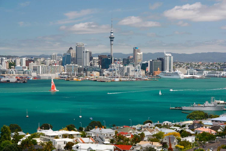 Vejen til studievisum: New Zealand
