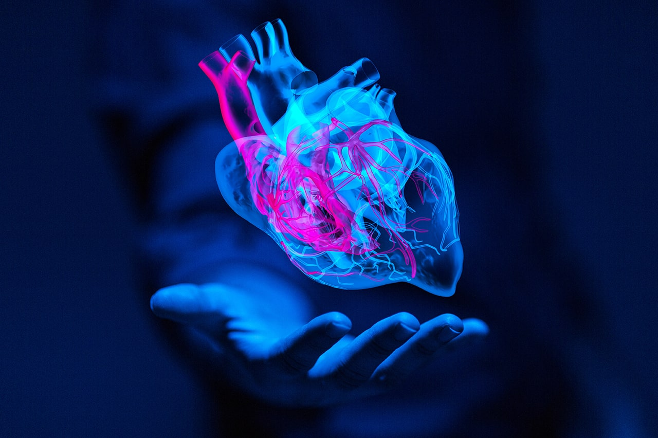 handheld digital heart model floating in hand