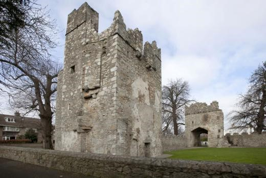 DLR tourism, things to do: Monkstown Castle