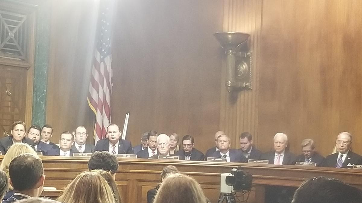 Dr. Ford's view while testifying