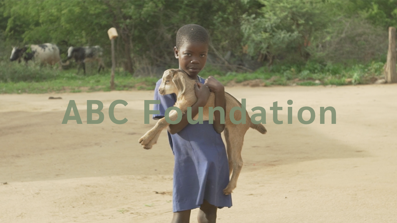 African Bush Camps | ABC Foundation