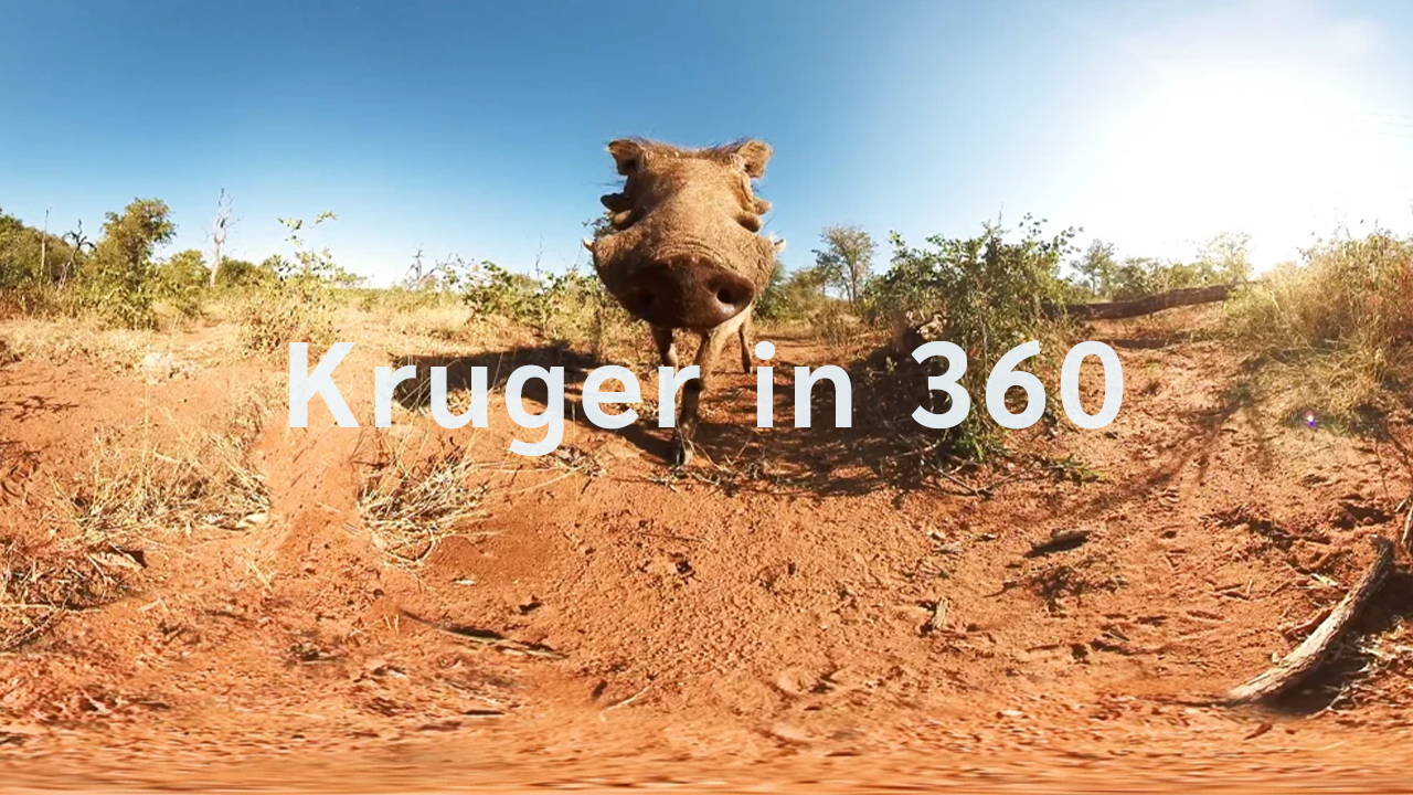 Sun destinations | Greater Kruger in 360