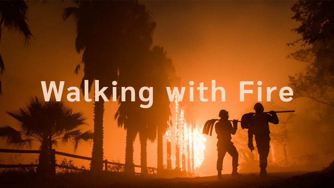 Walking with Fire | A Wildfire Documentary