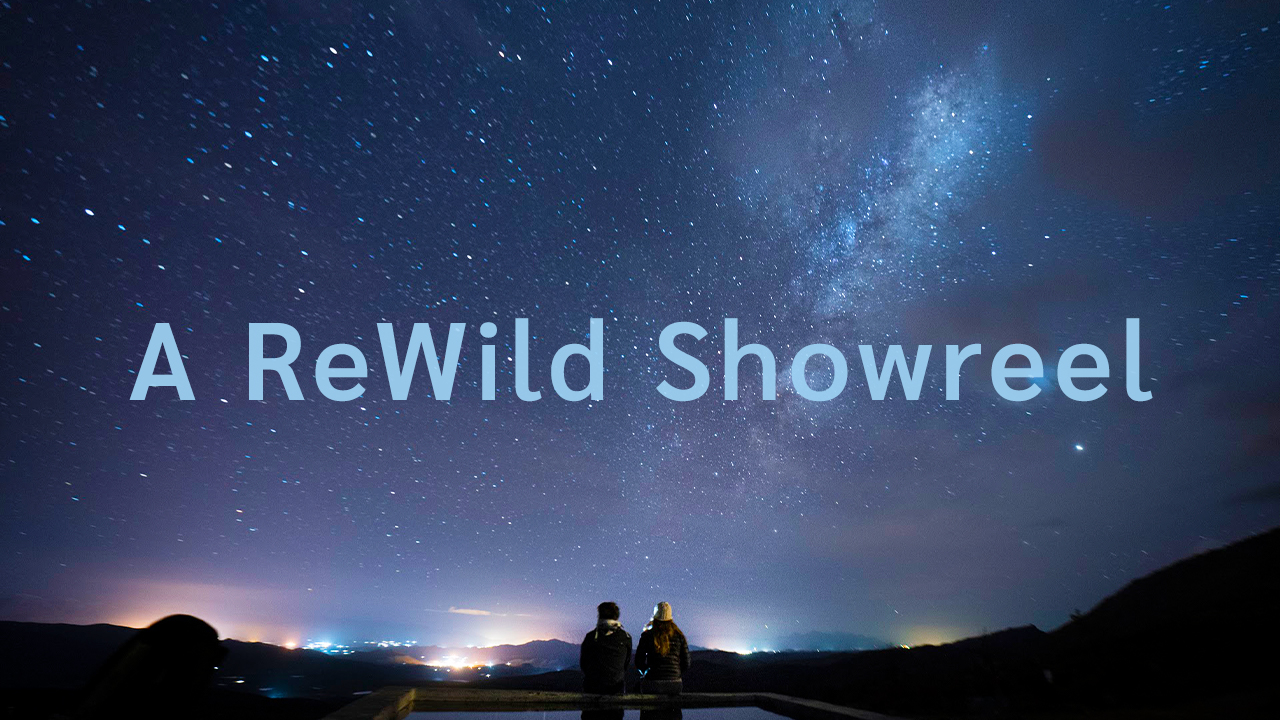 Standing for the Wild Ones | A ReWild Showreel