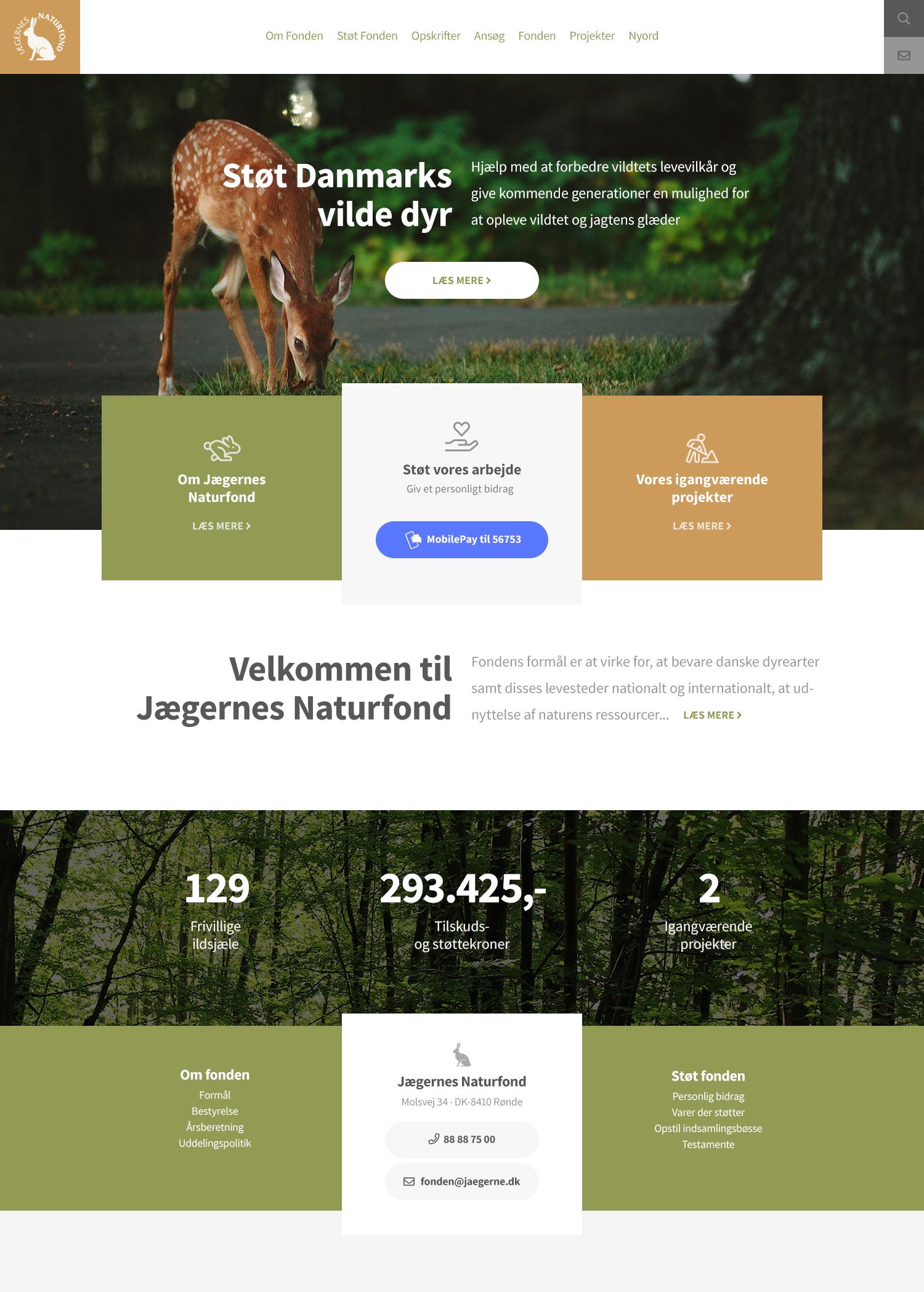 Billede der viser design på forsiden af Danmarks Naturfonds nye hjemmeside