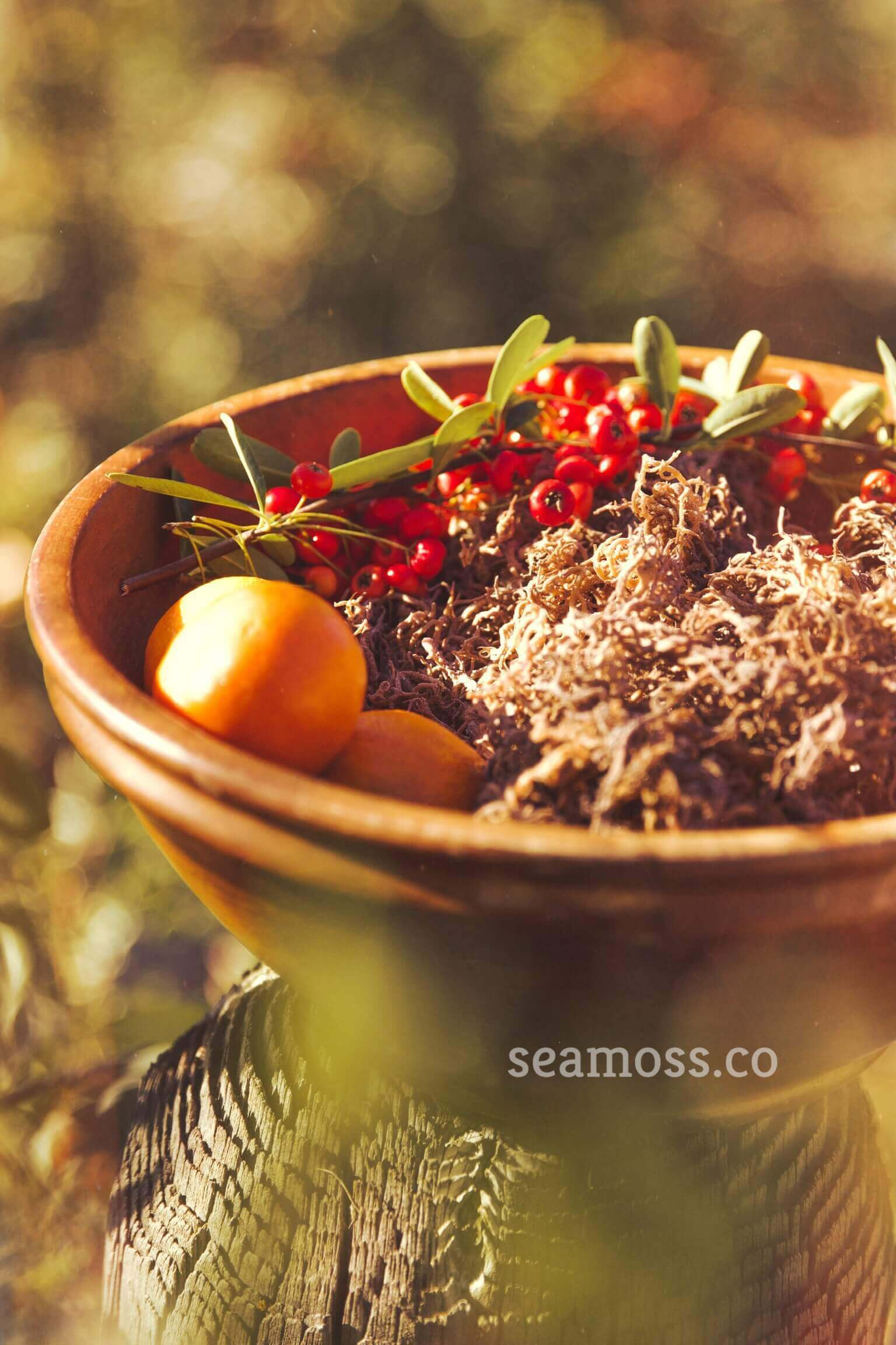Beautiful Bowl with sea Moss