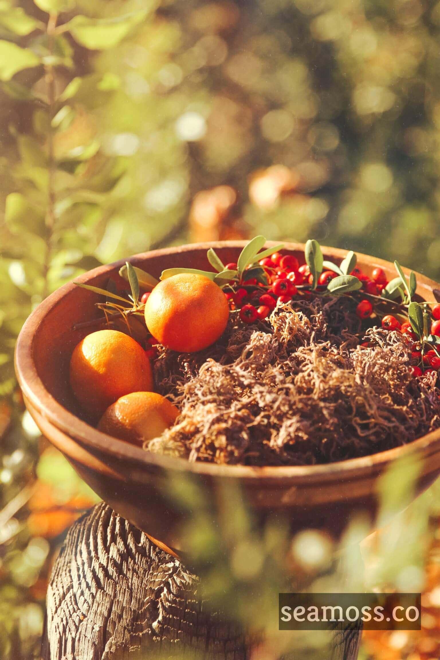 Fruit bowl with sea moss on tree stump