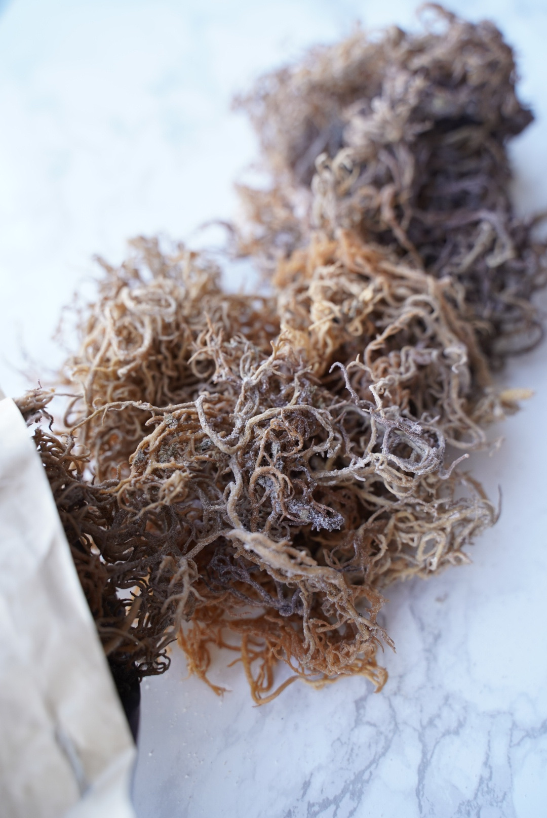 Raw Wildcrafted African Sea Moss 32oz