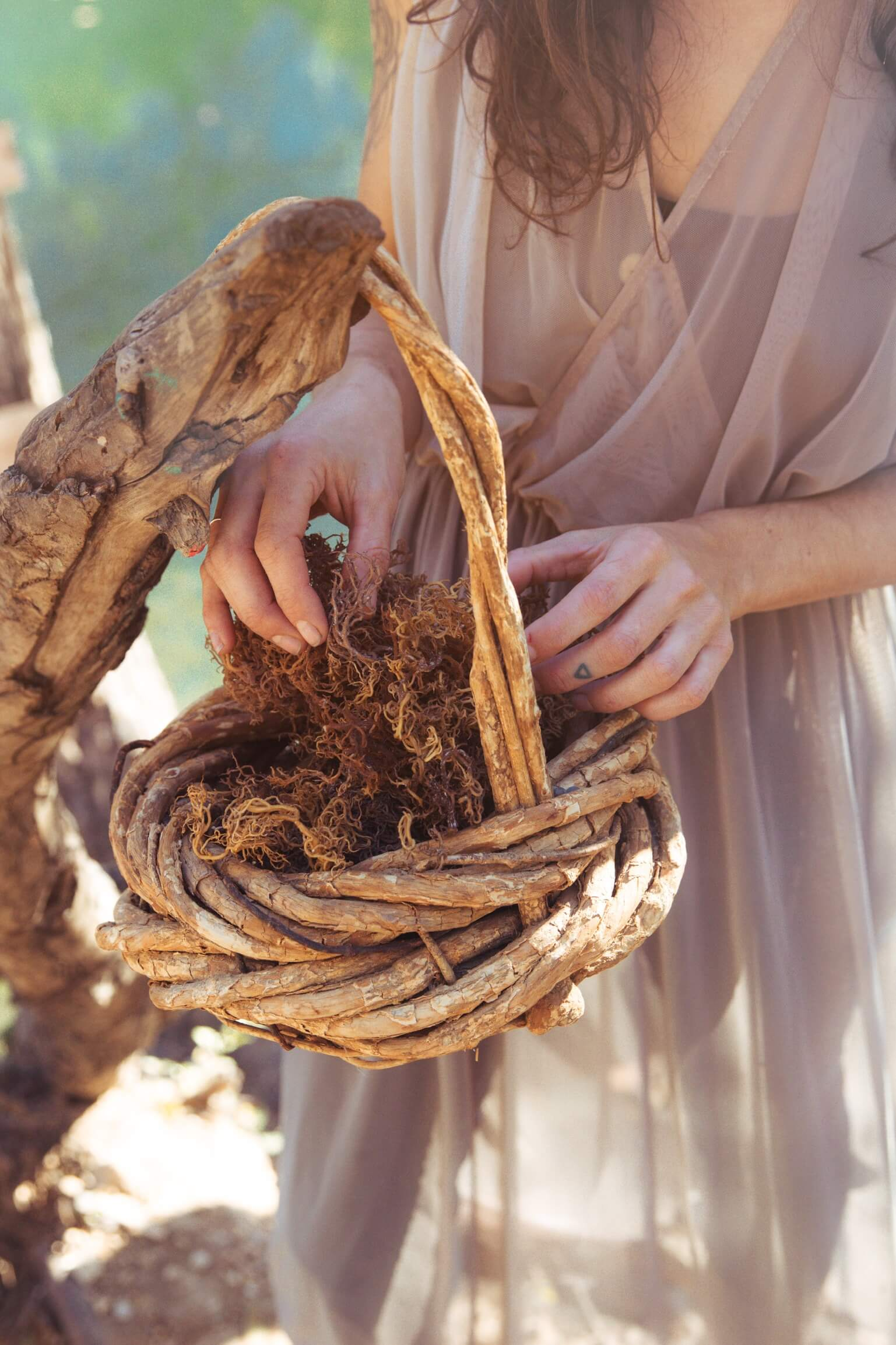 Daane with basket II