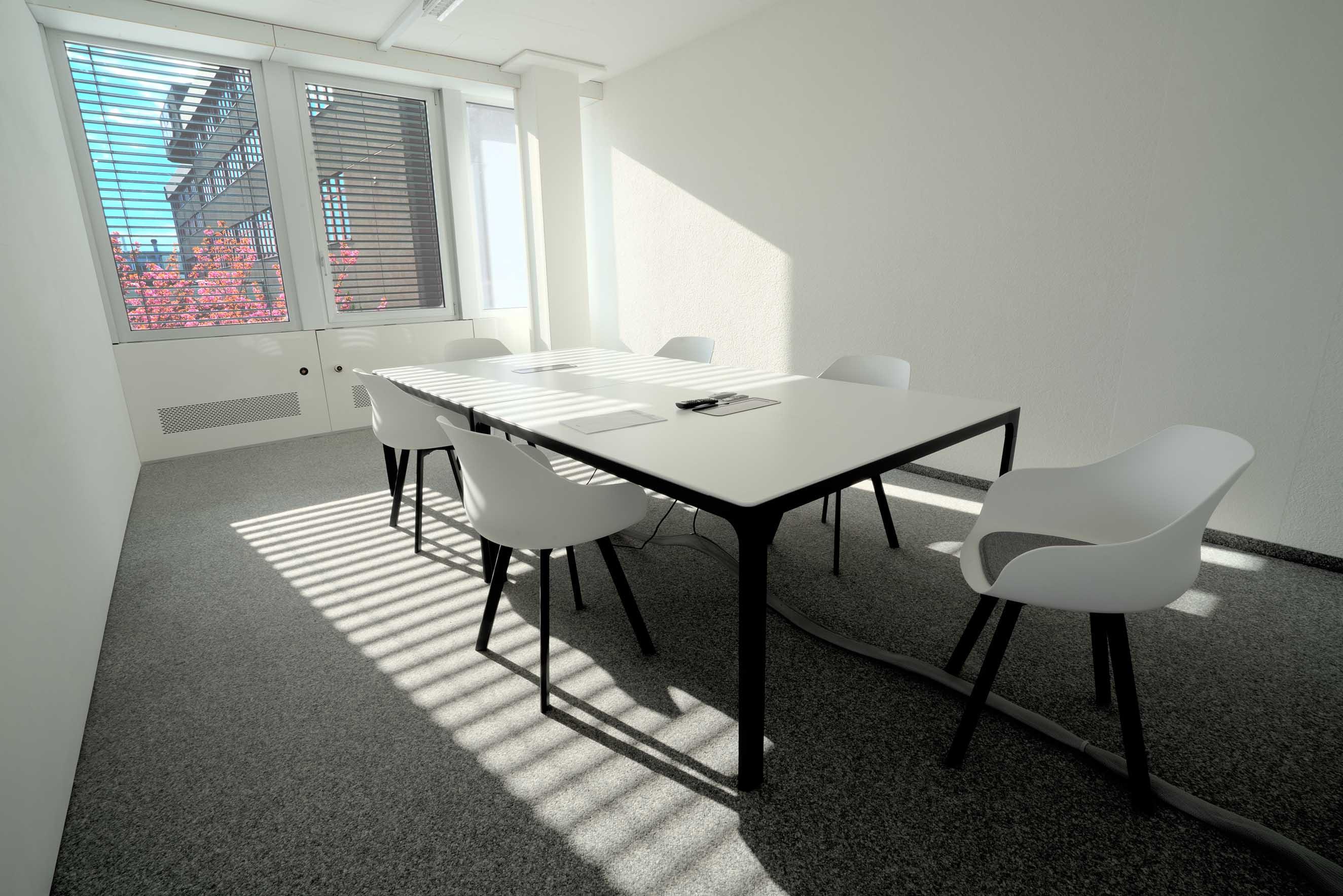 Meetingraum, Room, Design, Loght, Licht, altstetten, büro mieten