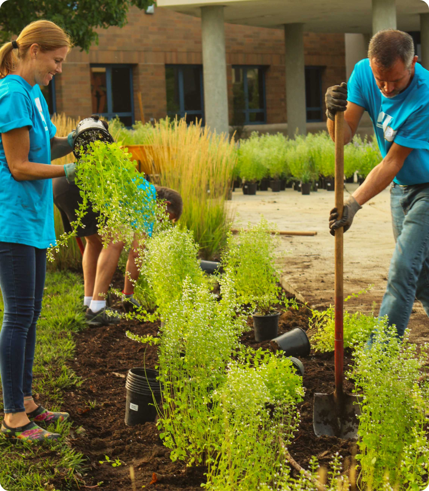 2 volunteers planting greenery