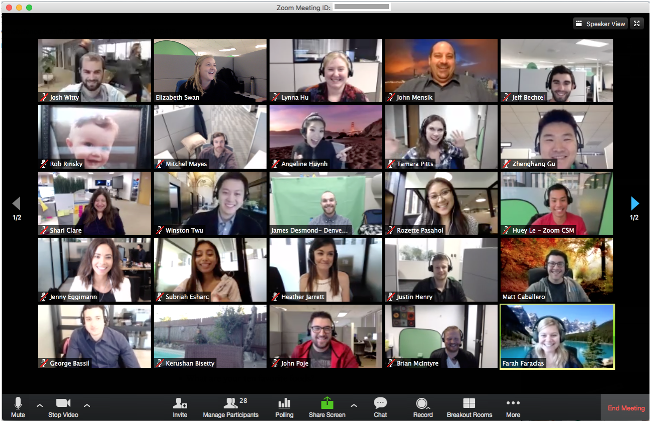 Zoom call with several people