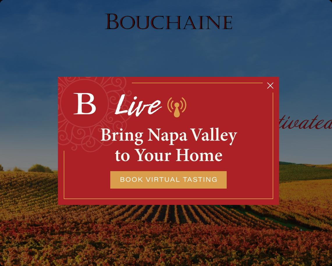 Bouchaine website preview