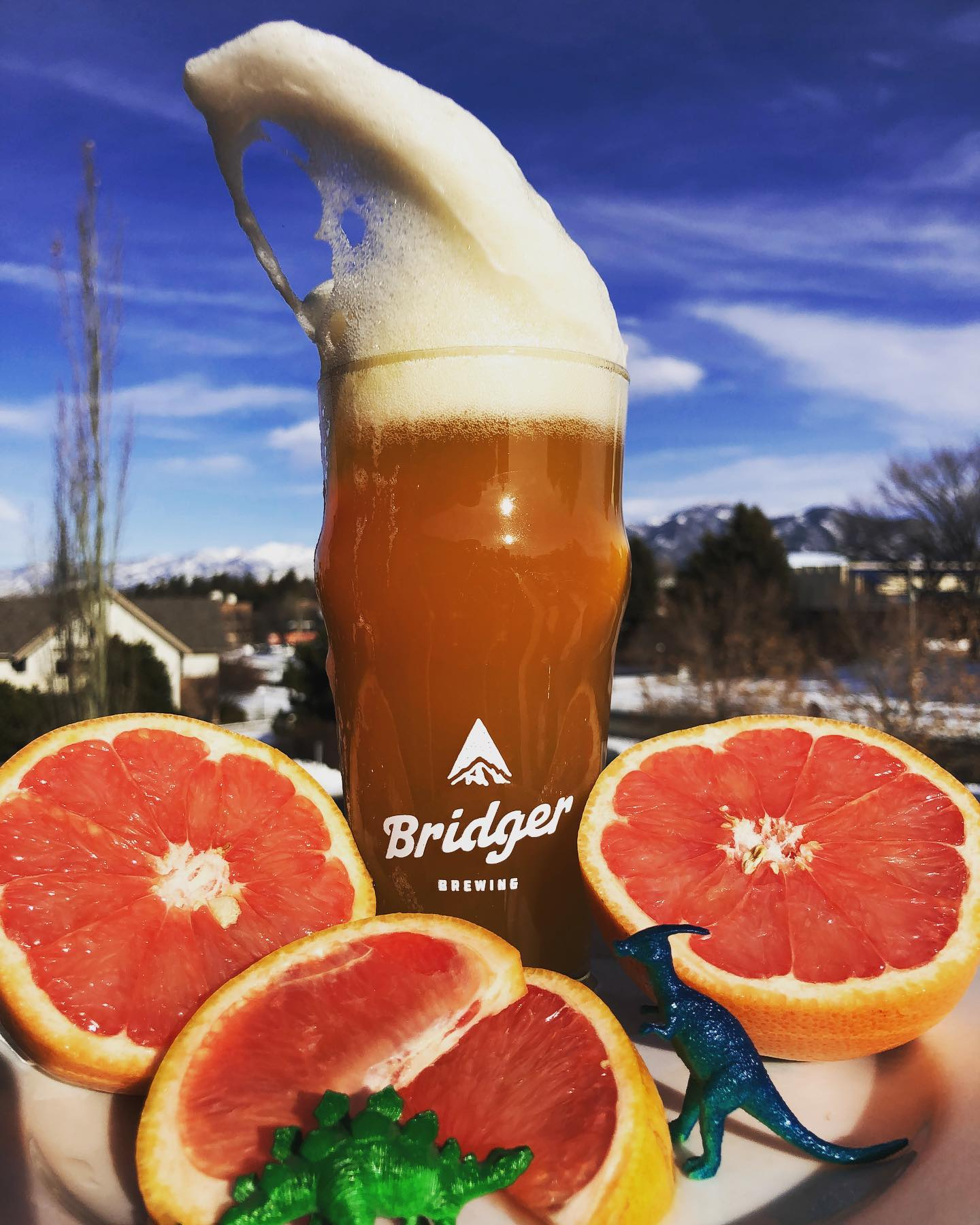 Bridger Brewing Instagram Feed