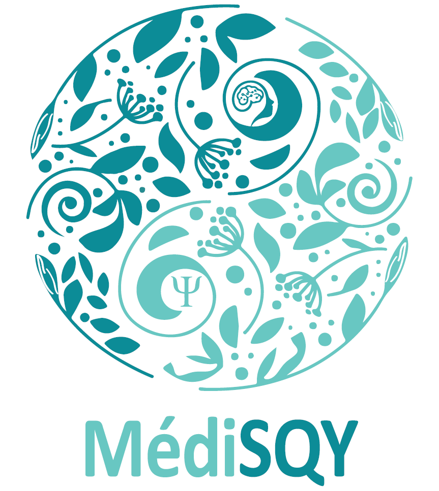 logo medisqy