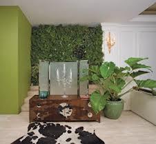 manfaat-menambahkan-tanaman-dinding-di-dalam-rumah