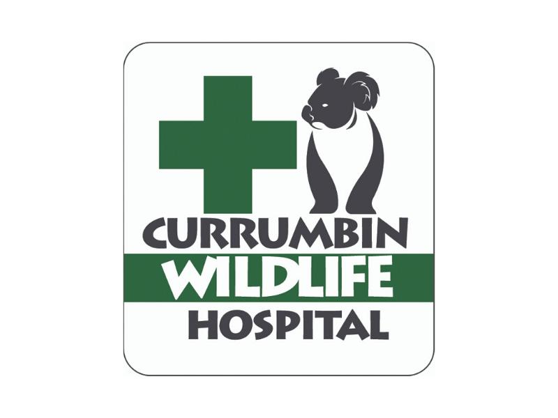 Charity Partnership: Currumbin Wildlife Hospital