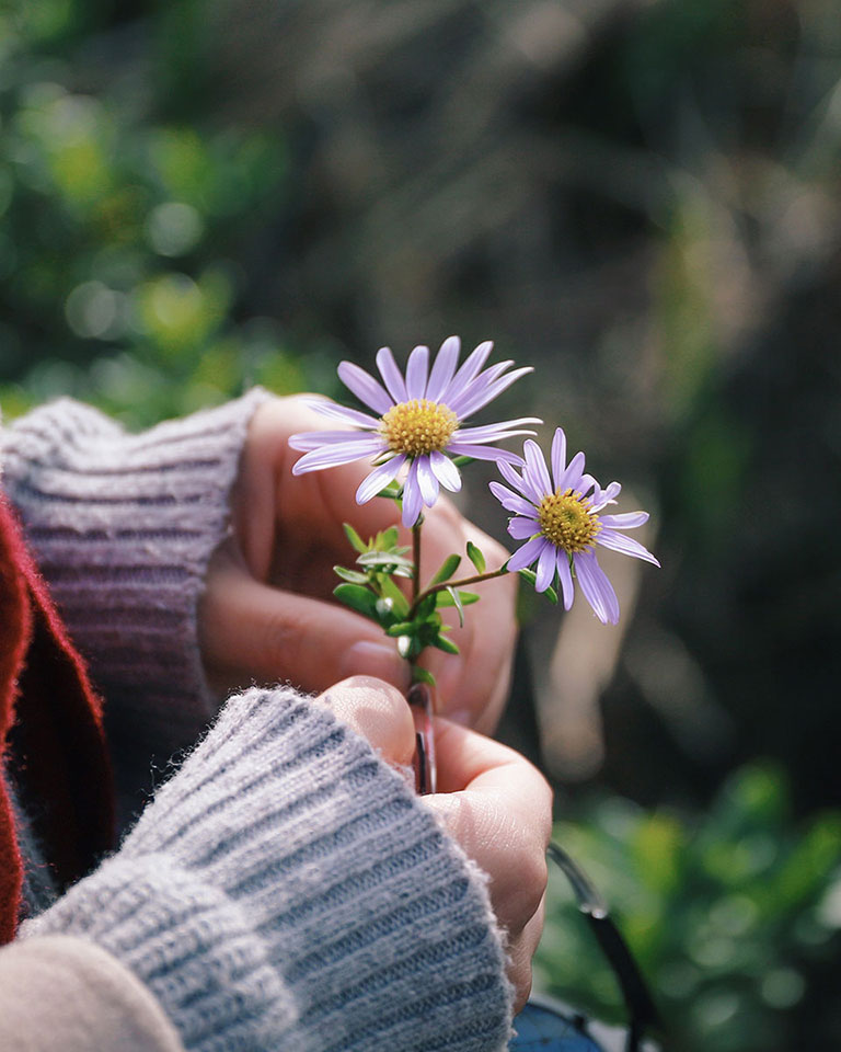 A young woman holding a purple wild flower