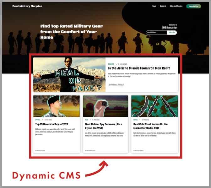 webflow dynamic cms