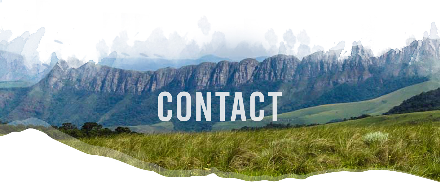 Contact header image