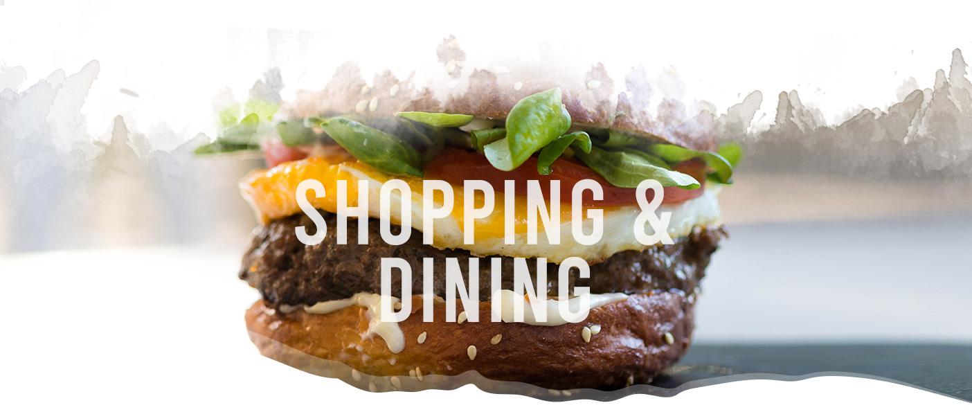 Shopping header image