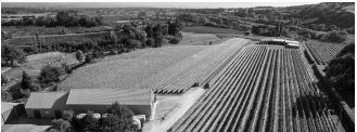 Old Albany Farm