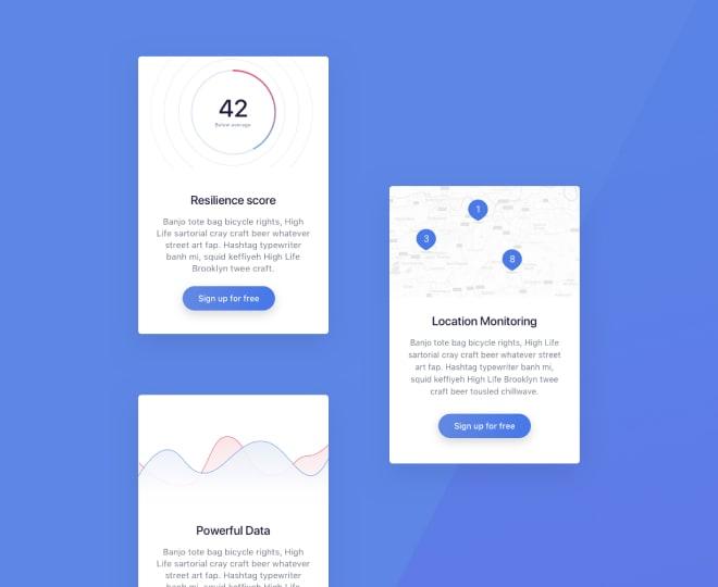 Screens of the web app we designed.