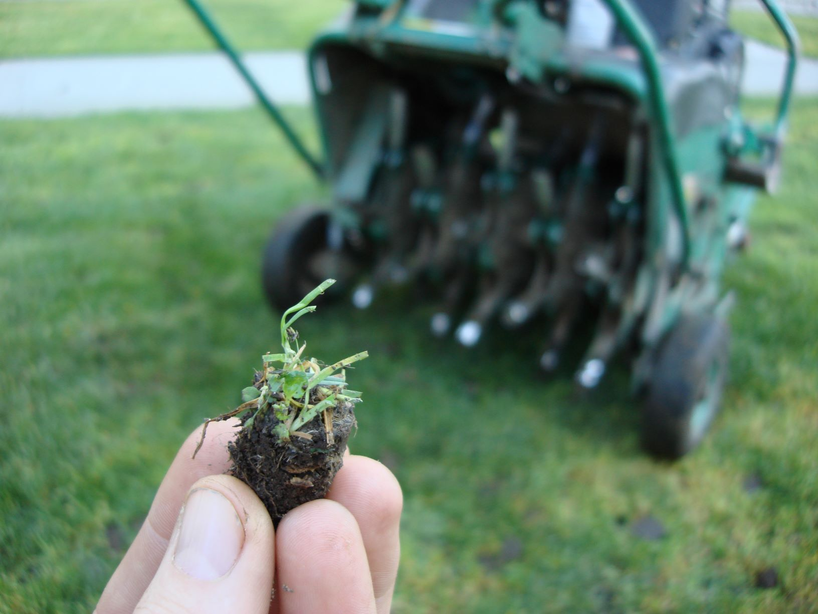Lawn Aeration: Why, When and How