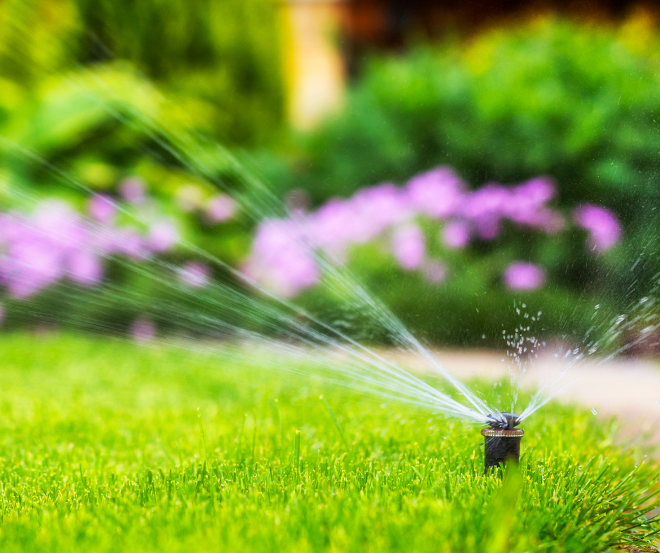 Tips for Watering Lawns with Warm Season Grasses
