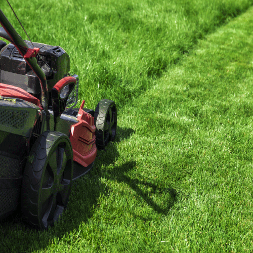 Get the best lawn mowing service at the most affordable price with OneNeighbor.  Lawn care starts at $20.