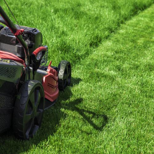 Frisco, Allen, Plano, McKinney Lawn Mowing Services