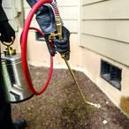 Frisco, Plano, Allen, McKinney pest control services